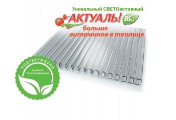 Сотовый поликарбонат Актуаль Био прозрачный толщина 4 мм