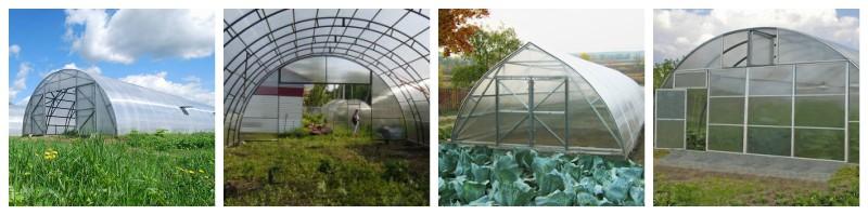 Фермерские теплицы под ключ разных форм