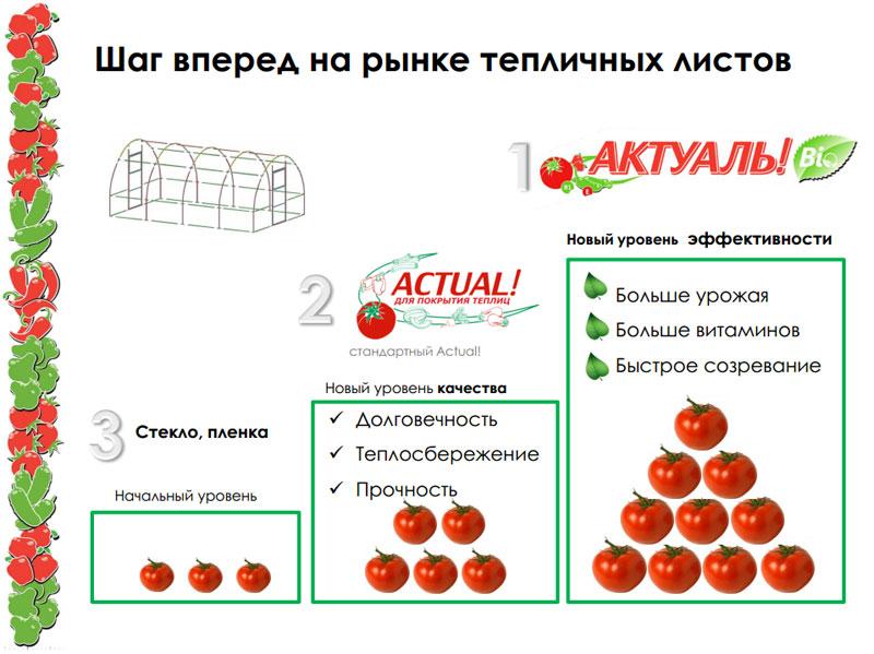Сотовый поликарбонат Актуаль Био для покрытия теплиц